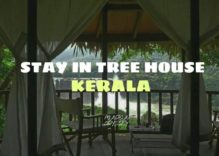 Tour to Kerala Tree House