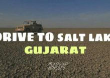 Travel to Gujrat Salt Lake Tour Details